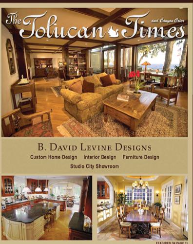 Press - Tolucan Times  - B. David Levine