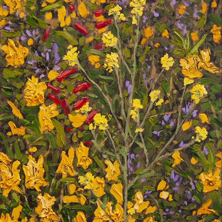Showroom - Art - Lisa Baldwin - Canyon Wildflowers